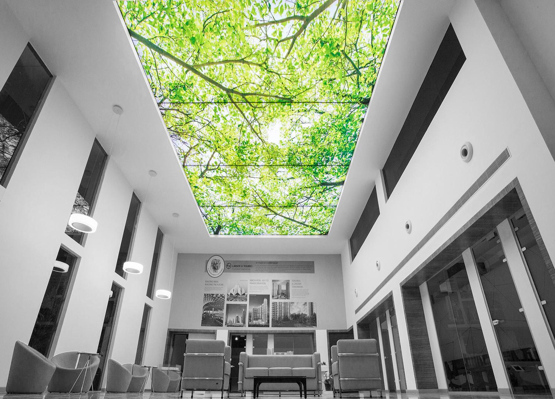 Зеленые натяжные потолки